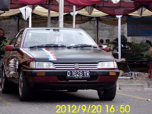 Pug 405SR'93 Front
