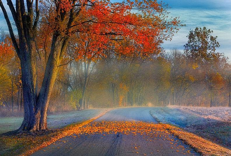 Δρόμος...