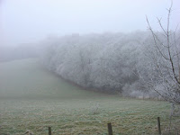 http://commons.wikimedia.org/wiki/File:Chiltern_Hoarfrost_-_geograph.org.uk_-_1274946.jpg