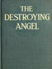 The Destroying Angel
