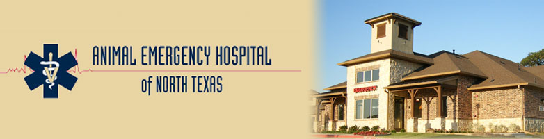 Animal Emergency Hospital of North Texas