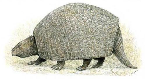 fauna prehistorica de Chile Parapropalaeohoplophorus