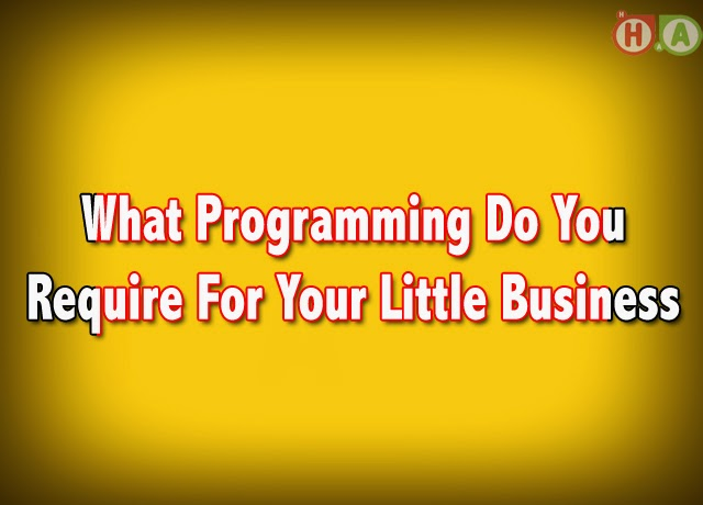 Software for Little Business
