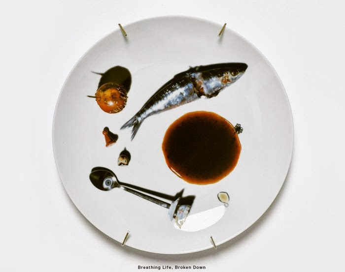 The Patella Brothers — Dish Art Series