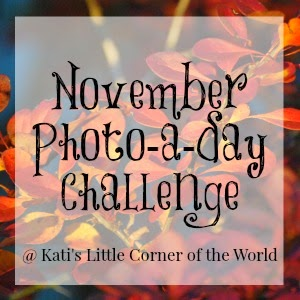 Link-up YOUR photo-a-day challenge posts here...
