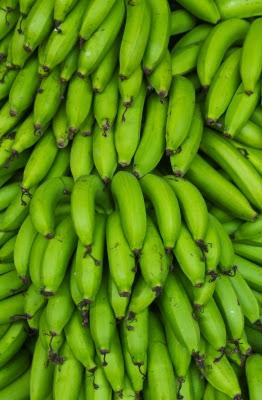 Bananes vertes