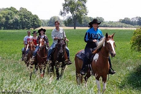 KNOX EQUINE TRAIL RIDING - JUST CLICK THE PICTURE FOR ALL THE DETAILS!