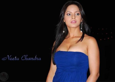 Neetu Chandra Hot Wallpapers
