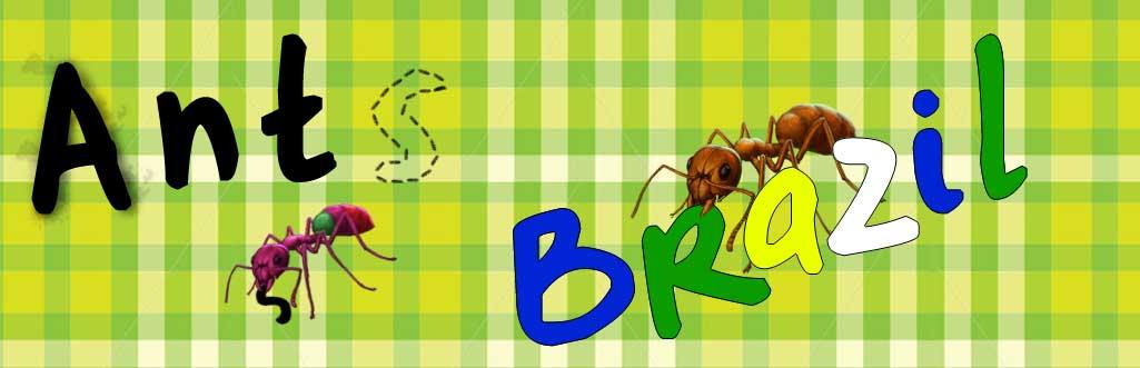 Ants Brazil