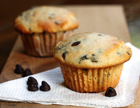 chocolate chip muffins pumpkin chocolate chip muffins chocolate chip ...