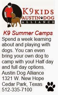 K9 Summer Camps