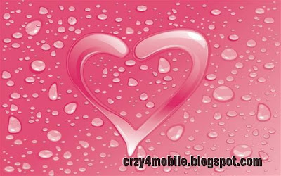 Valentines Day Heart Love Fresh Wallpapers