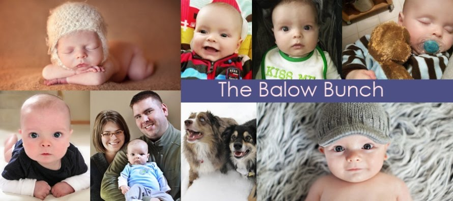 The Balow Bunch