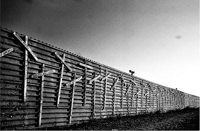 Muro, Wall