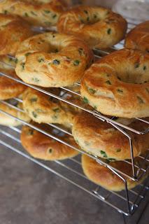 Jalapeño Cheddar Bagels: Savory Sweet and Satisfying