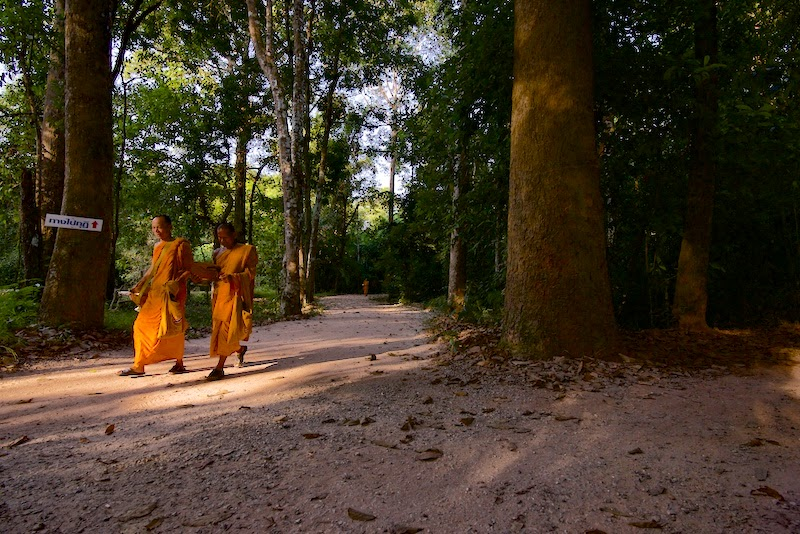 Two Theravada Buddhist monks are walking in the forest on their way to lunch at the forest monestary at Wat Suan Mokkh Theravada Buddhist temple in the southern province of Chaiya, Thailand.