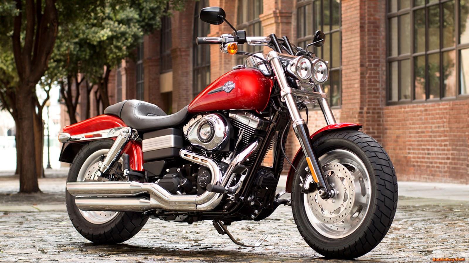 http://1.bp.blogspot.com/-64EGmK3aauk/UHDkt0MqtLI/AAAAAAAAAMk/snPOWm_Kk2w/s1600/Harley-Davidson-FXDF-Dyna-Fat-Bob-2013-Wallpapers-BullGallery.Com.jpg