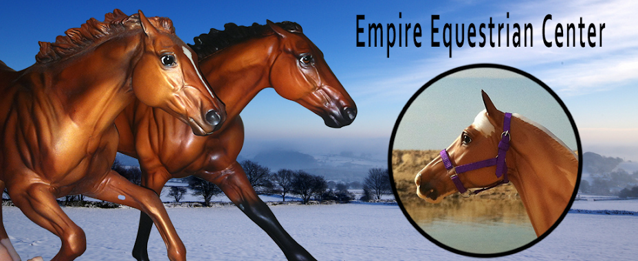 Empire Equestrian Center and Saddlery
