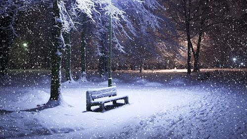 Imagem de neve caindo sobre um banco iluminado com árvores ao redor