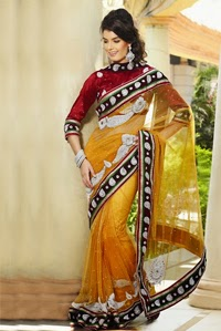 netted saree designs