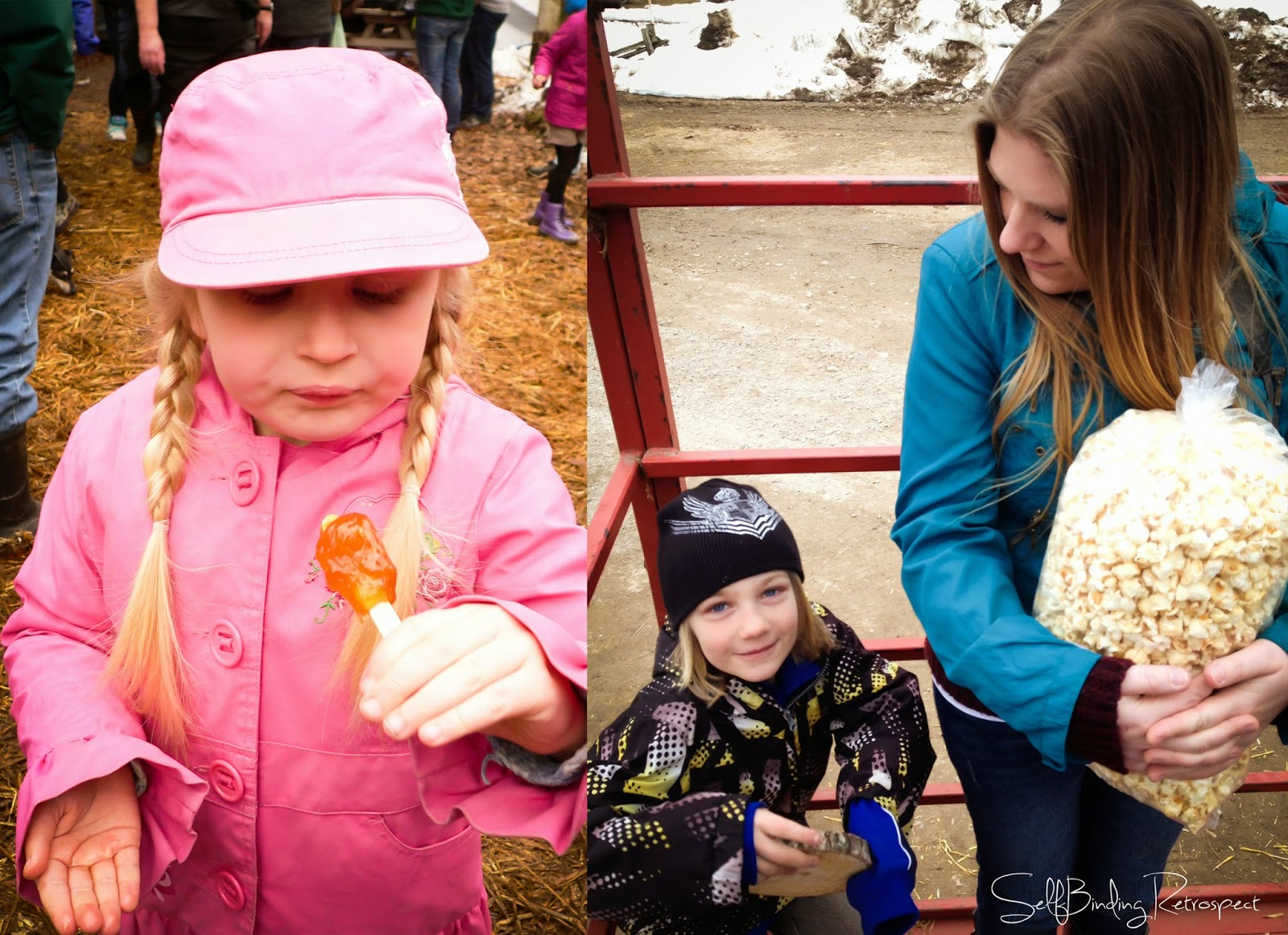 Holstein Maplefest, maple taffy, wagon ride, kettlecorn