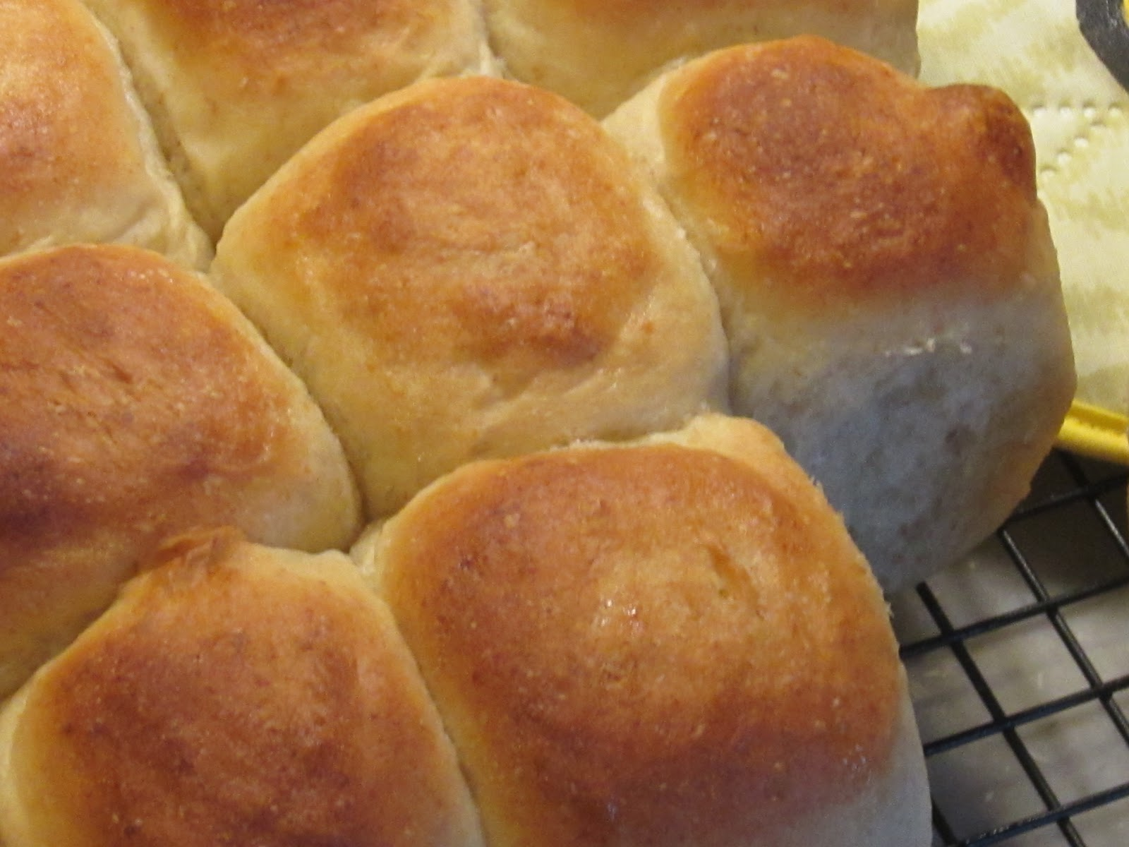 ... Apiary Aliquippa, PA: Honey Dinner Rolls--Great for Thanksgiving