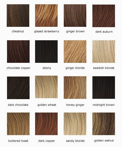 Hair Color Shades For Highlights images
