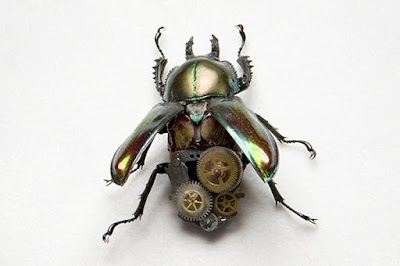 incredibly steampunk insect by Lindsay Bessanson