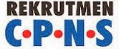Daftar Instansi Yang Gunakan CAT BKN Untuk TKD CPNS 2013