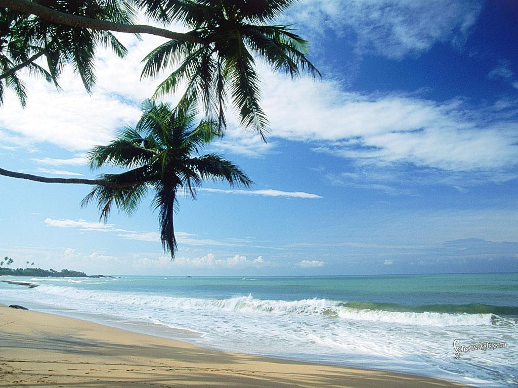Bora Bora Beach The Vacation Spot Beautiful Place In The