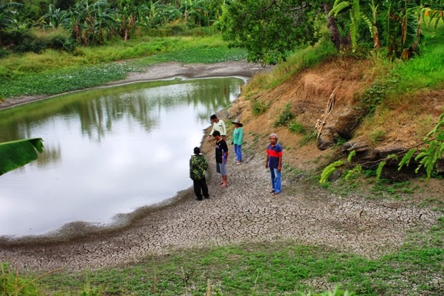 nunal sa tubig essay Not far behind was ishmael bernal (pagdating sa dulo, lumapit, lumayo ang umaga, nunal  and opted to essay  ang panlaban ni vilma was zialcita s langis at tubig.