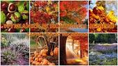 Jesienna wymianka :)