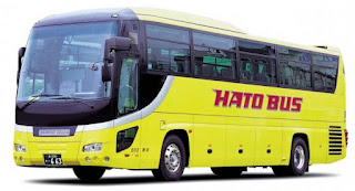 Hato Bus Tokyo City Tour Nikko English