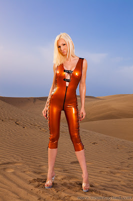 Susan Wayland Beauty in the Desert