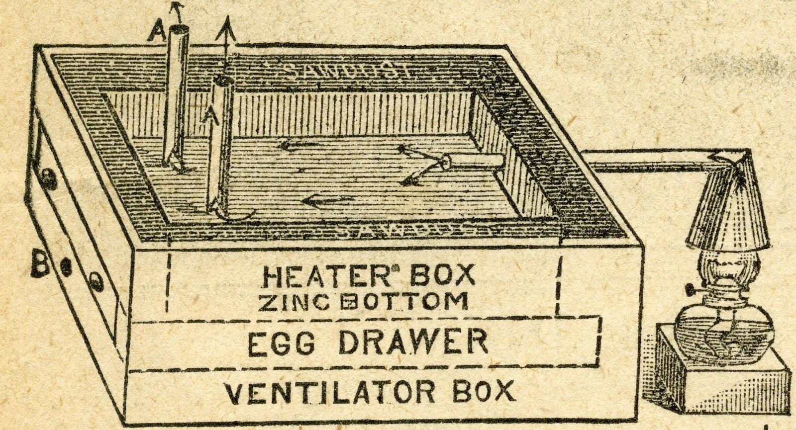 homemade chicken incubator instructions