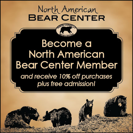 Please help our North American Bears!-Just One Click!