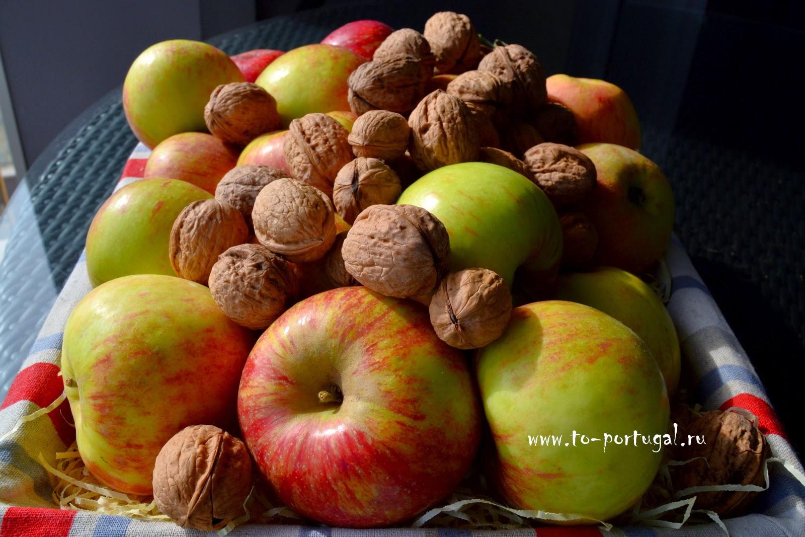 фрукты в Португалии, португальские яблоки, грецкие орехи растут в Португалии