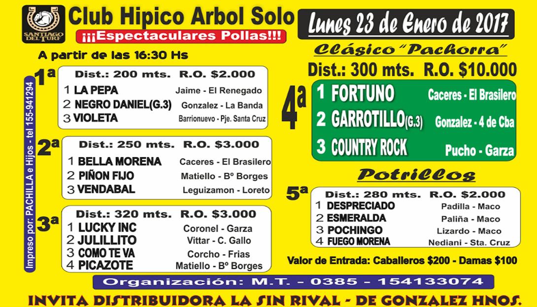 23-01-17-HIP.ARBOL SOLO-PROG.