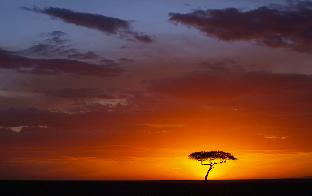 African sunset in Maasai Mara, Kenya