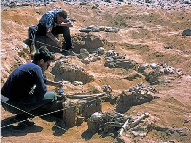 13,000 year old Saharan remains may be evidence of first race war