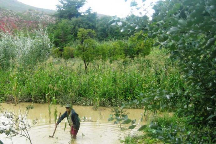 Municipios de Zudáñez y Culpina, reportan perdidas productivas por intensas lluvias y vientos