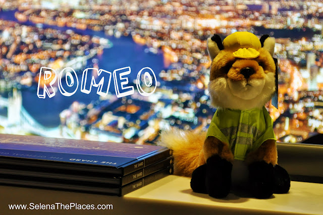 Romeo Fox The View from The Shard London