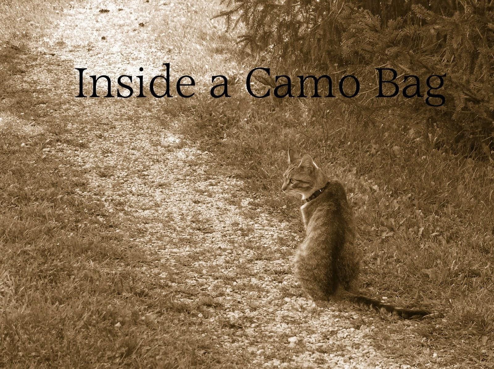 Inside a Camo Bag