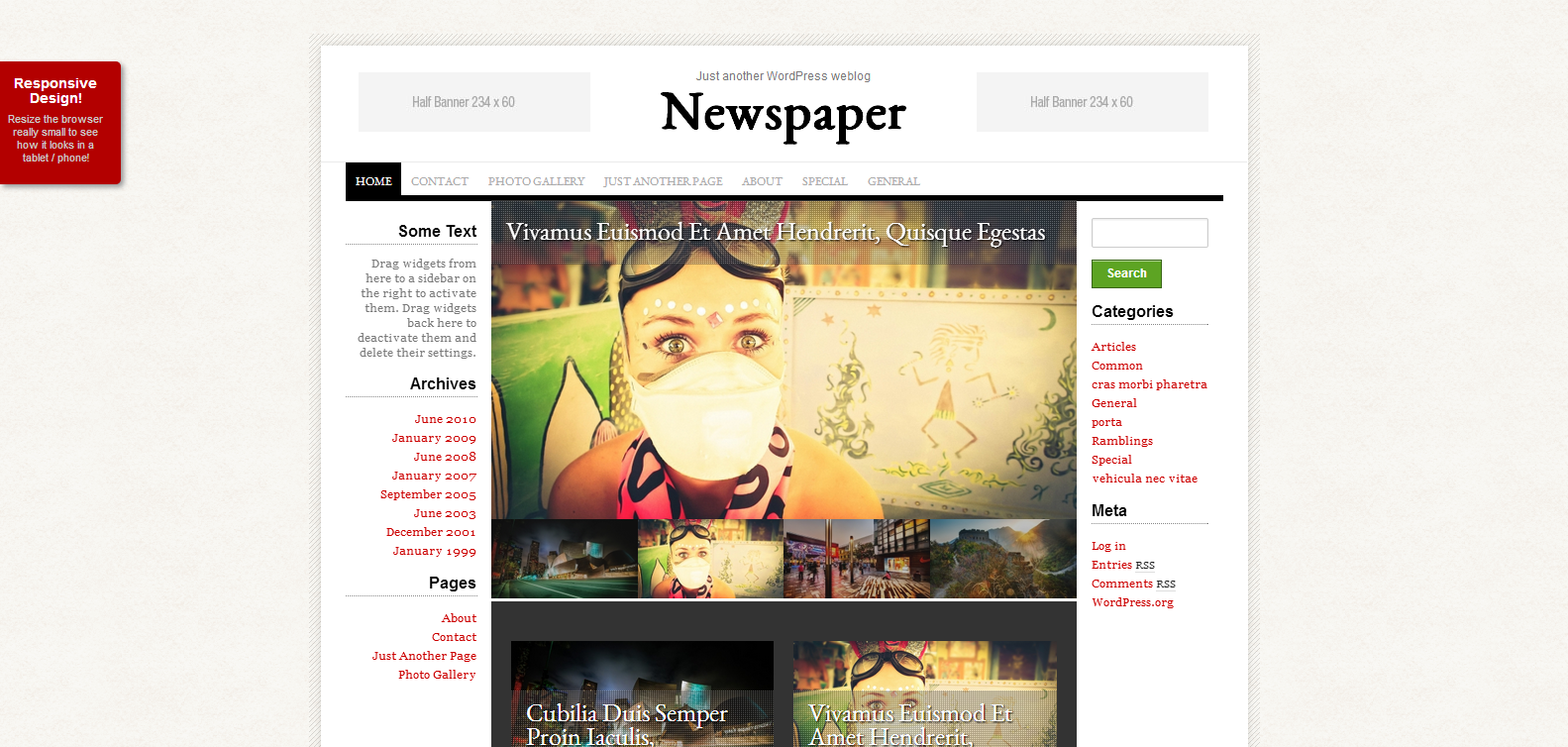 Newspaper – Professional WordPress Theme