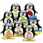 Linux Learning for Beginners