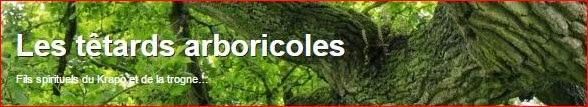 http://lestetardsarboricoles.fr/wordpress/2013/08/12/le-vieux-chene-de-kerverne-lignol-morbihan/