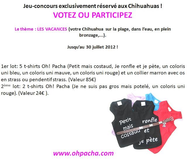 Jeu Oh! Pacha: concours réservé au Chihuahua