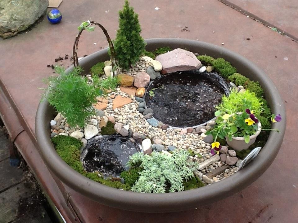 lets grow fairy garden