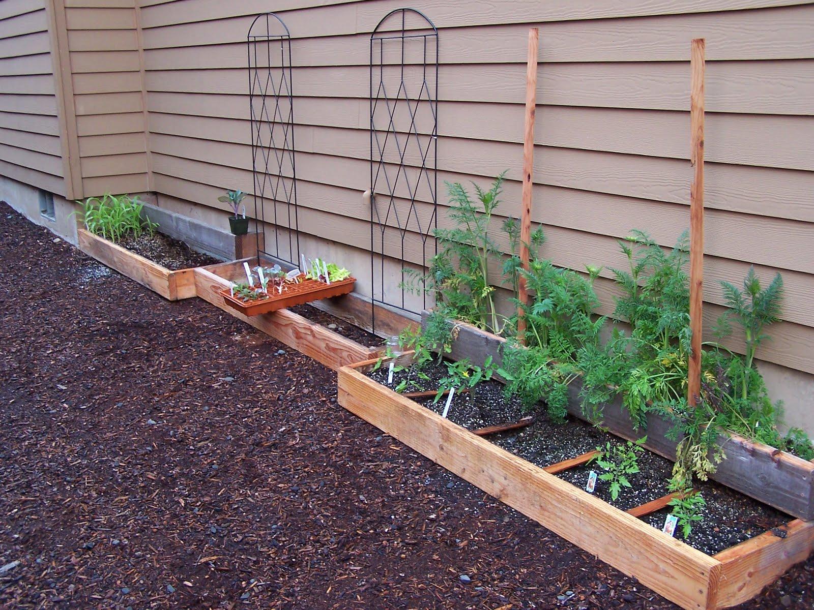 how does your garden grow making a garden journal creative