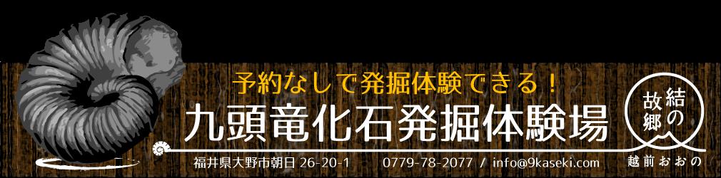 九頭竜化石発掘体験場 ~北陸の小京都 福井県大野市で化石発掘体験しよう!~